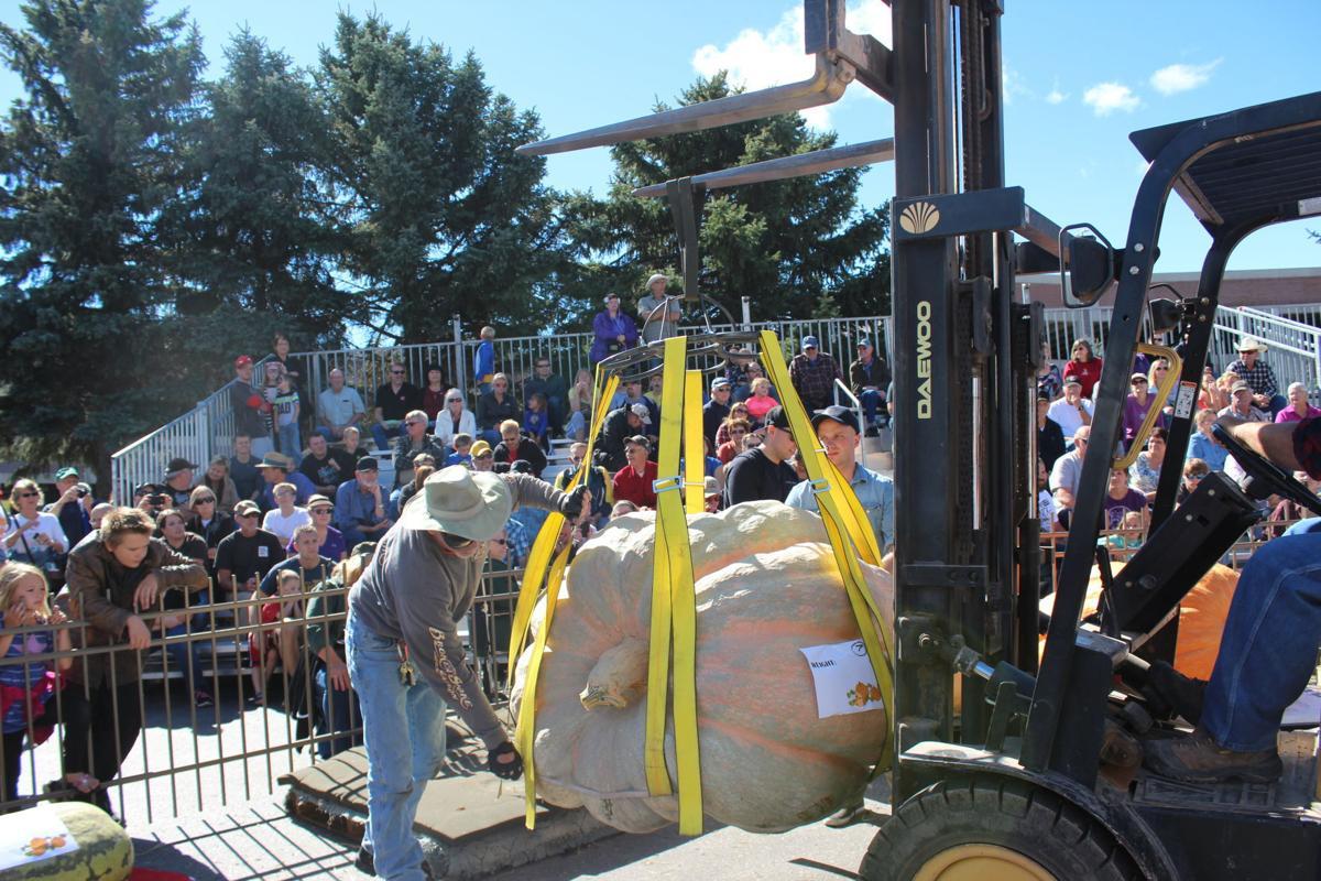 1,292-pound pumpkin wins Rapid City weigh-off (copy)