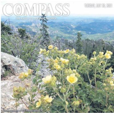 Compass 7-20.jpg