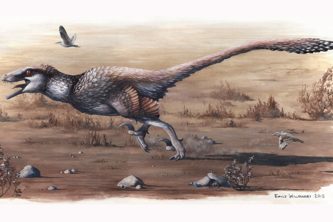 110515-nws-raptor