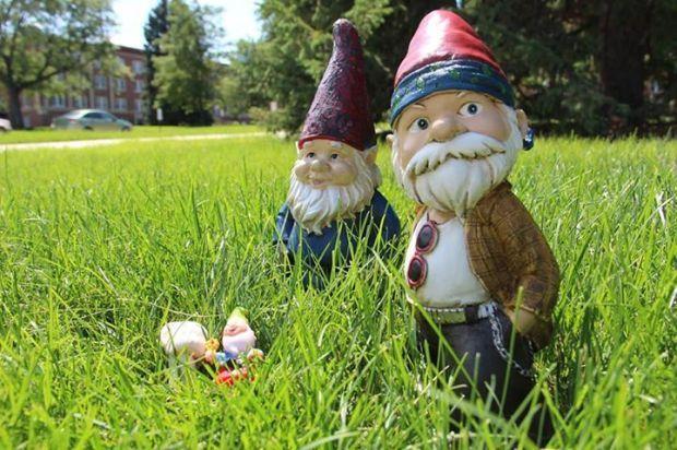 Gnome Hunting