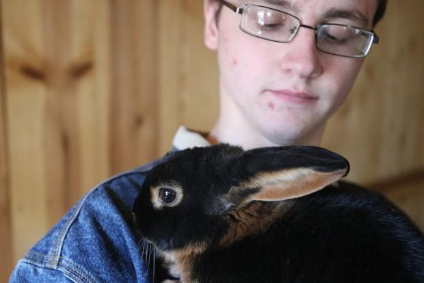 041511.rabbits2