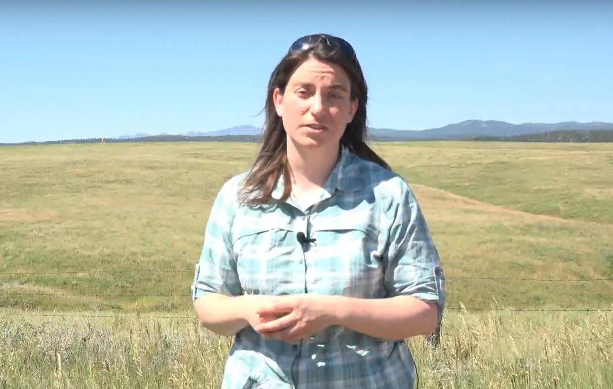 Ecologist distills diverse research on Great Plains energy development