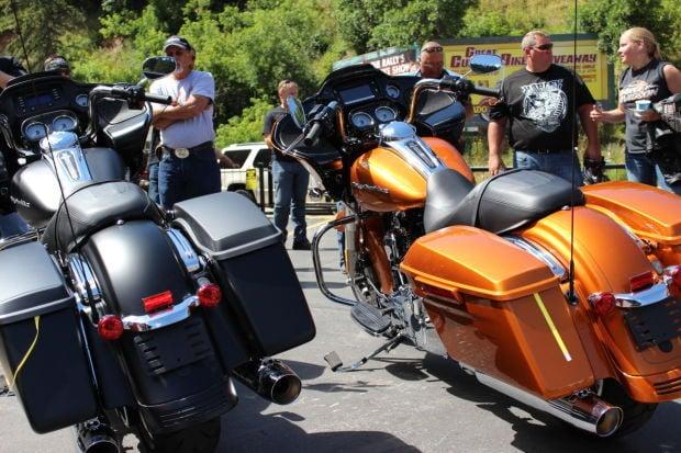 Harley Reveal
