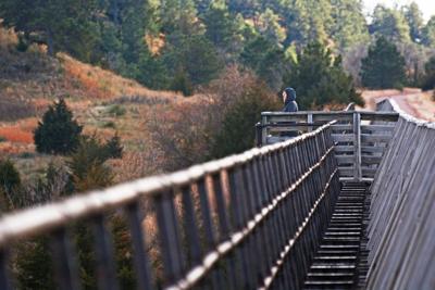 Cowboy Trail