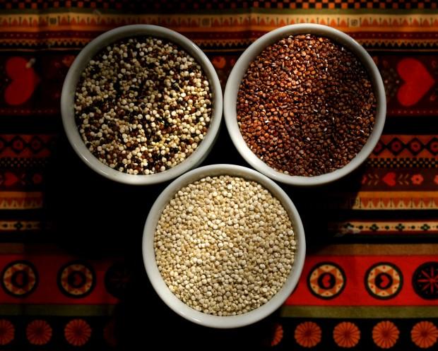 040512.quinoa01.jpg