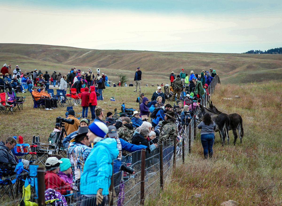 54th Annual Buffalo Roundup at Custer State Park