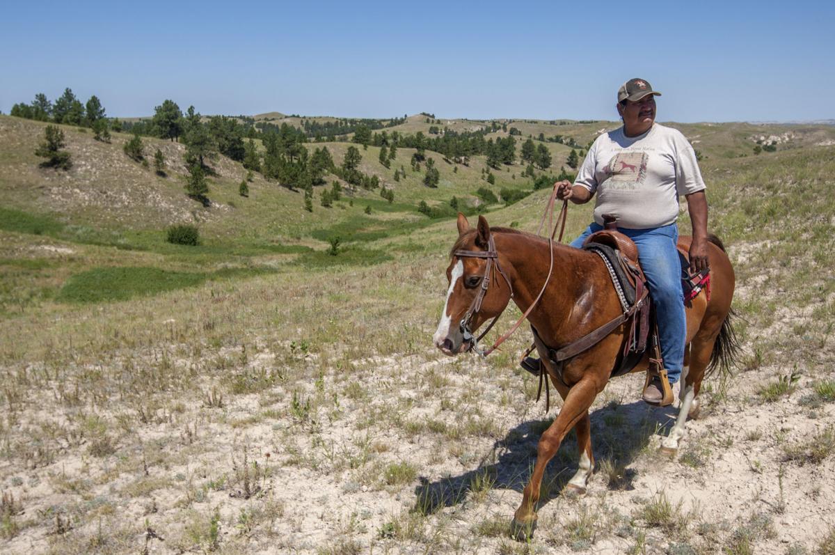 071817-nws-horses 001.JPG
