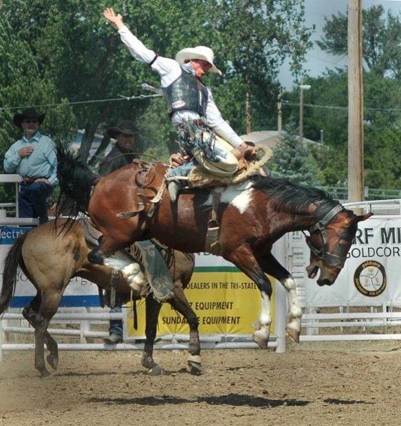 Sunday S High School Short Go More Than Just Rodeo Belle