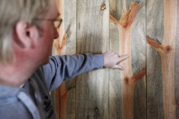 Markets Sought For Pine Beetle Infested Wood