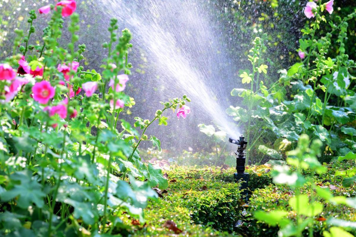Garden, water