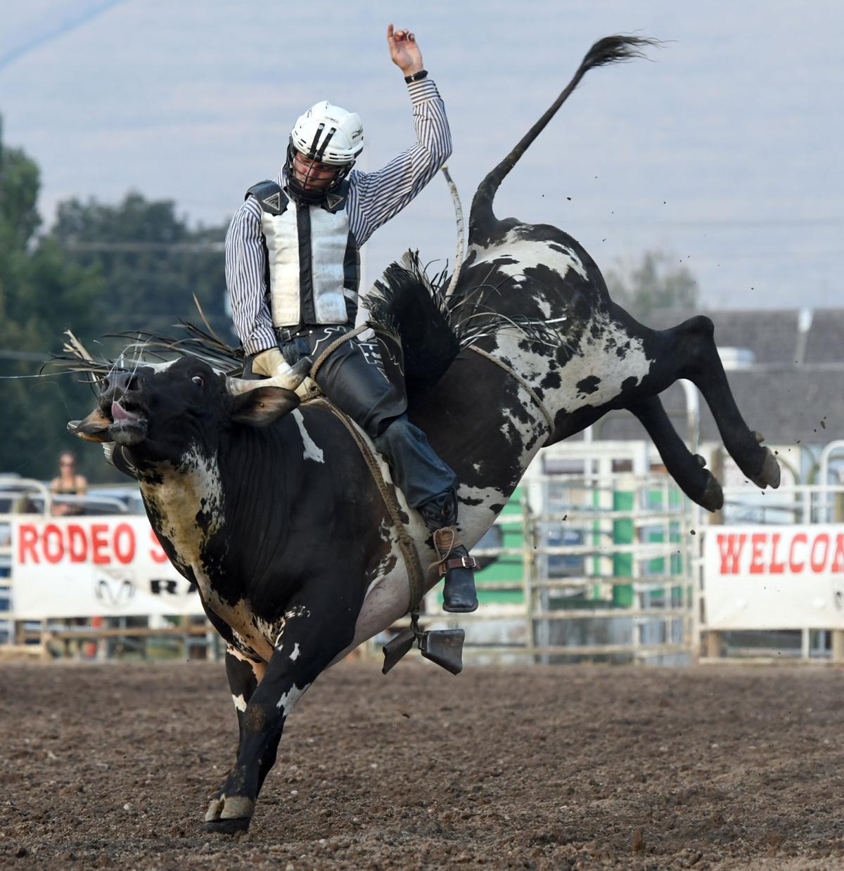 081017 bull riding gallery4.jpg