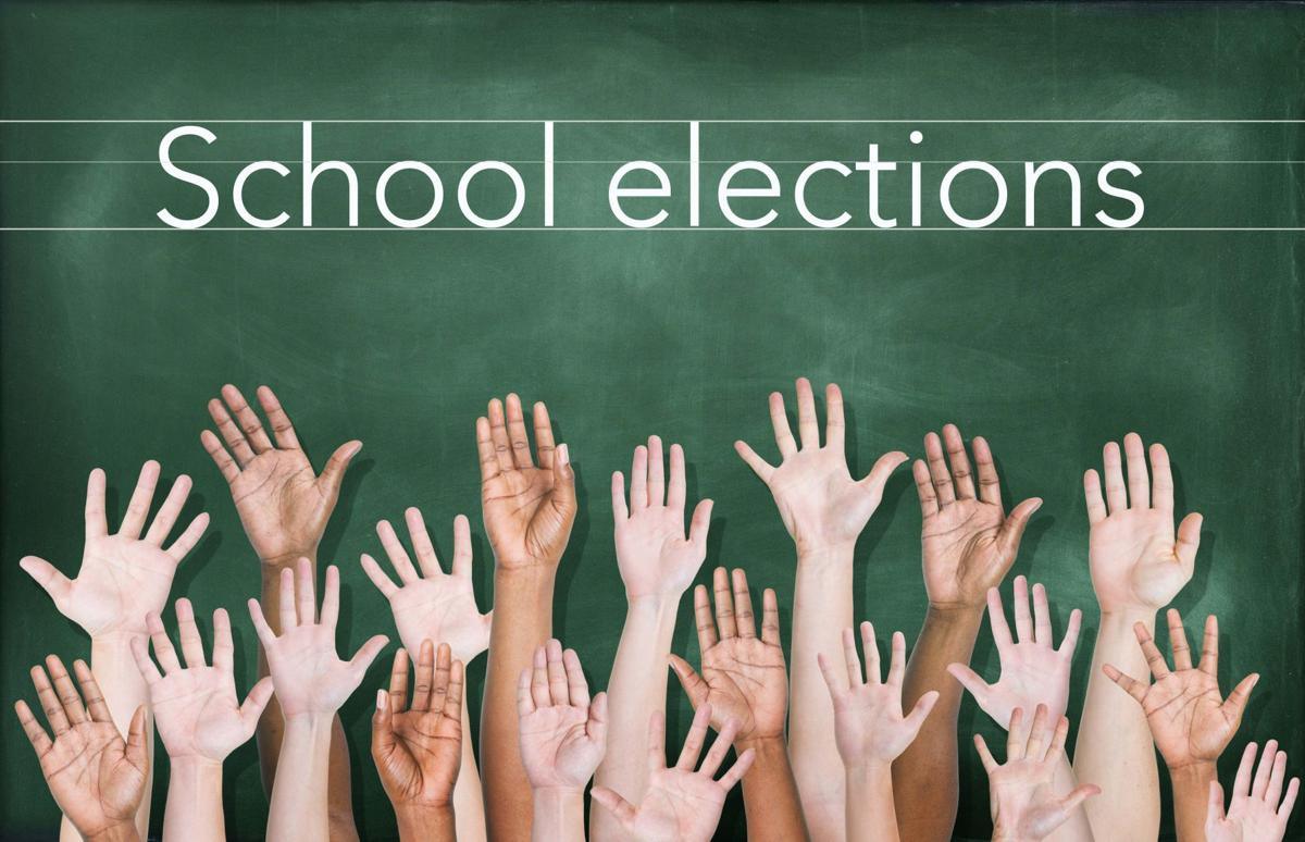 school elections icon