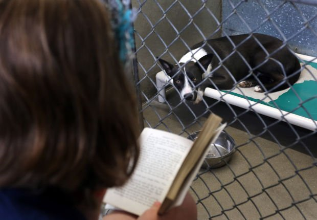 Dog-eared stories: Students spend time reading to animals at humane association