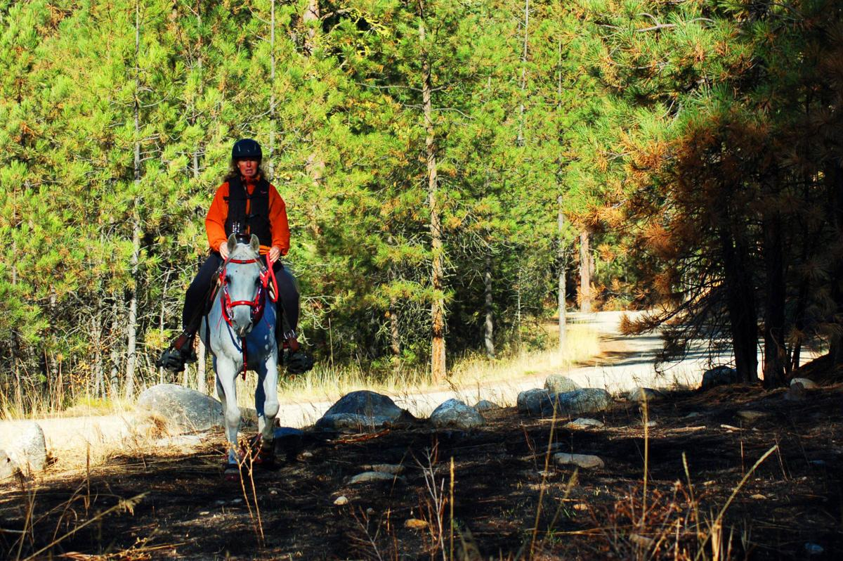 Trail riding is popular at Bass Creek