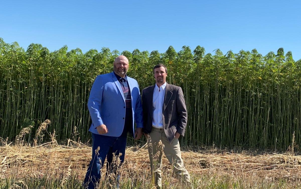 Lawyers for hemp farmers