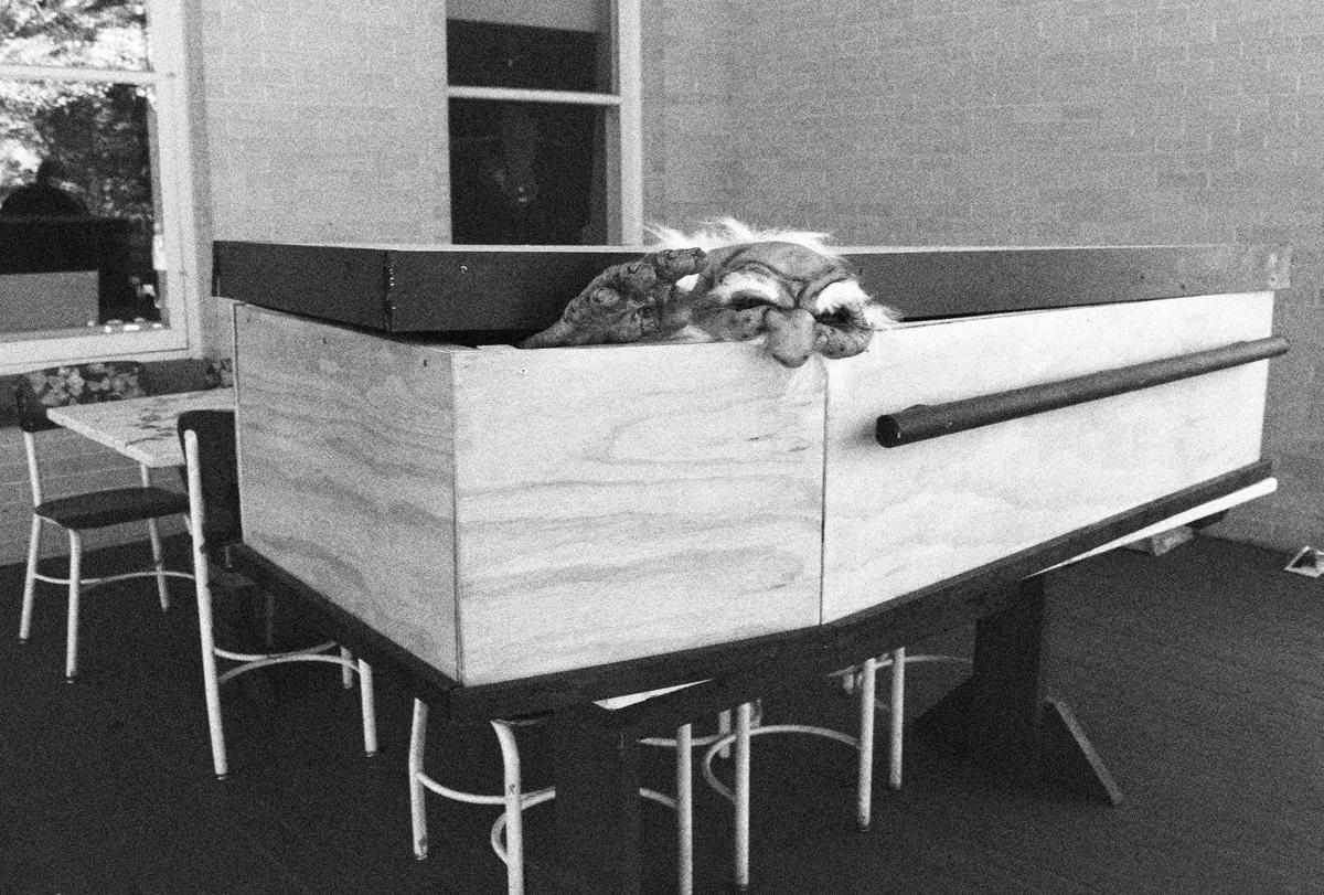 Mansion Coffin