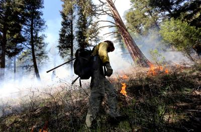 Bitterroot National Forest prescribed fire