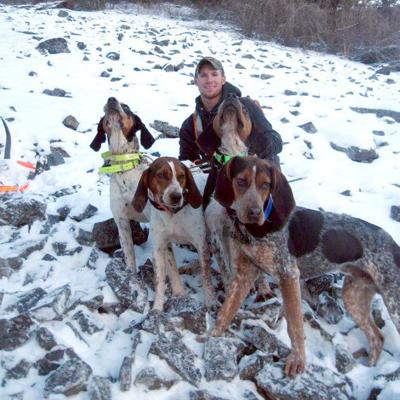 Stevensville mountain lion hunter loses dogs to wolves