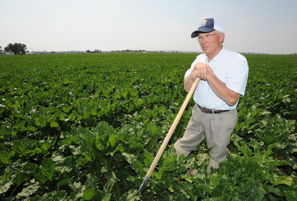 Sugar beet farmer Kelly Brester