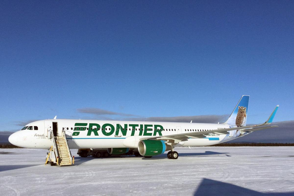 On a wing and a tail: Florence woman's owl inspires tail painting on new airplanes