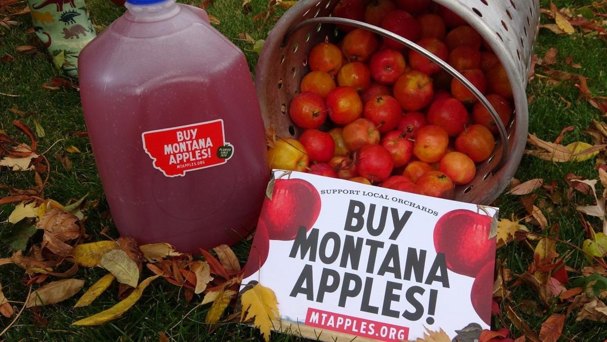 The snow may have fallen, but Montana apples are ripe for your table