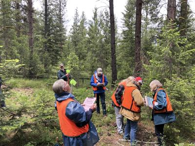 Landowners Surveying