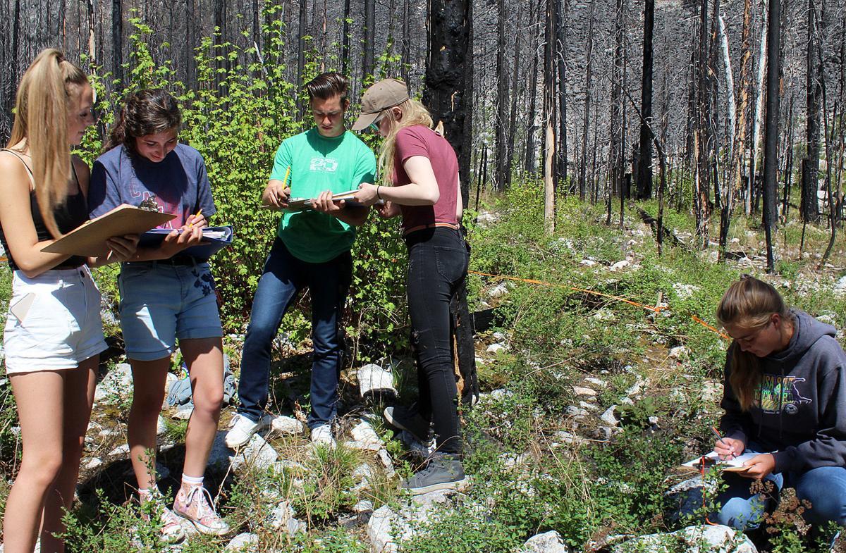 CHS Ecology group recording biodiversity