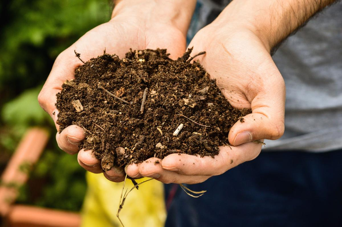 Dirty Fingernails: Newspapers safe as mulch | Life in the Bitterroot ...