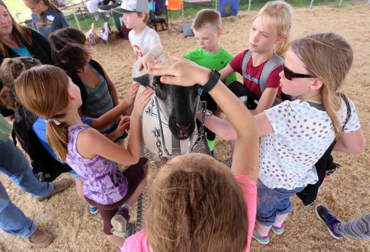 Fourth Grade Farm Fair