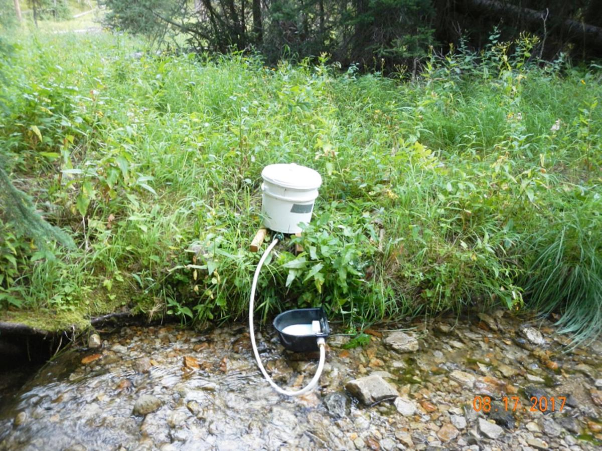 Overwhich Creek fish removal project aims to remove non