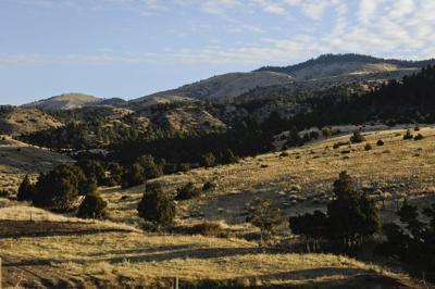 FWP eyeing Townsend-area ranch for new wildlife management area