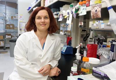 RML researcher Andrea Marzi