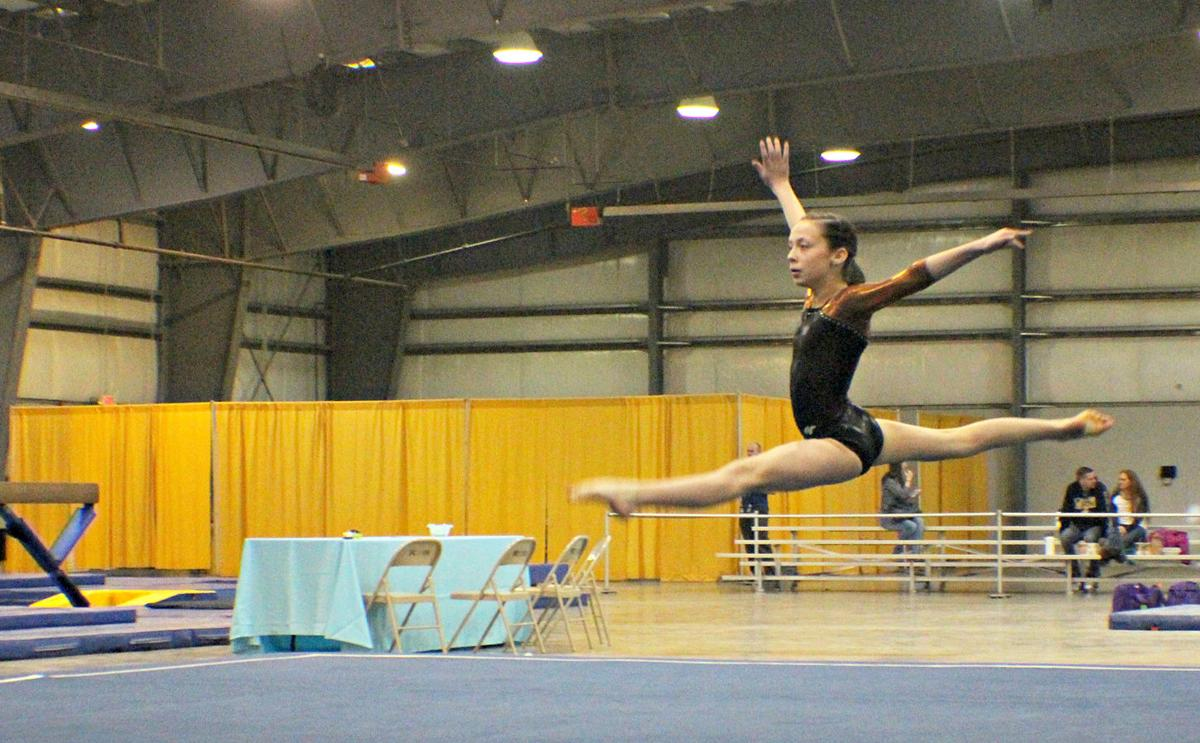 Velocity Gymnastics takes first at state competition