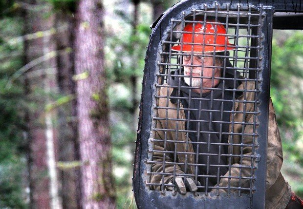 Thinning work: Loggers remove beetle-killed trees from Bitterroot campgrounds