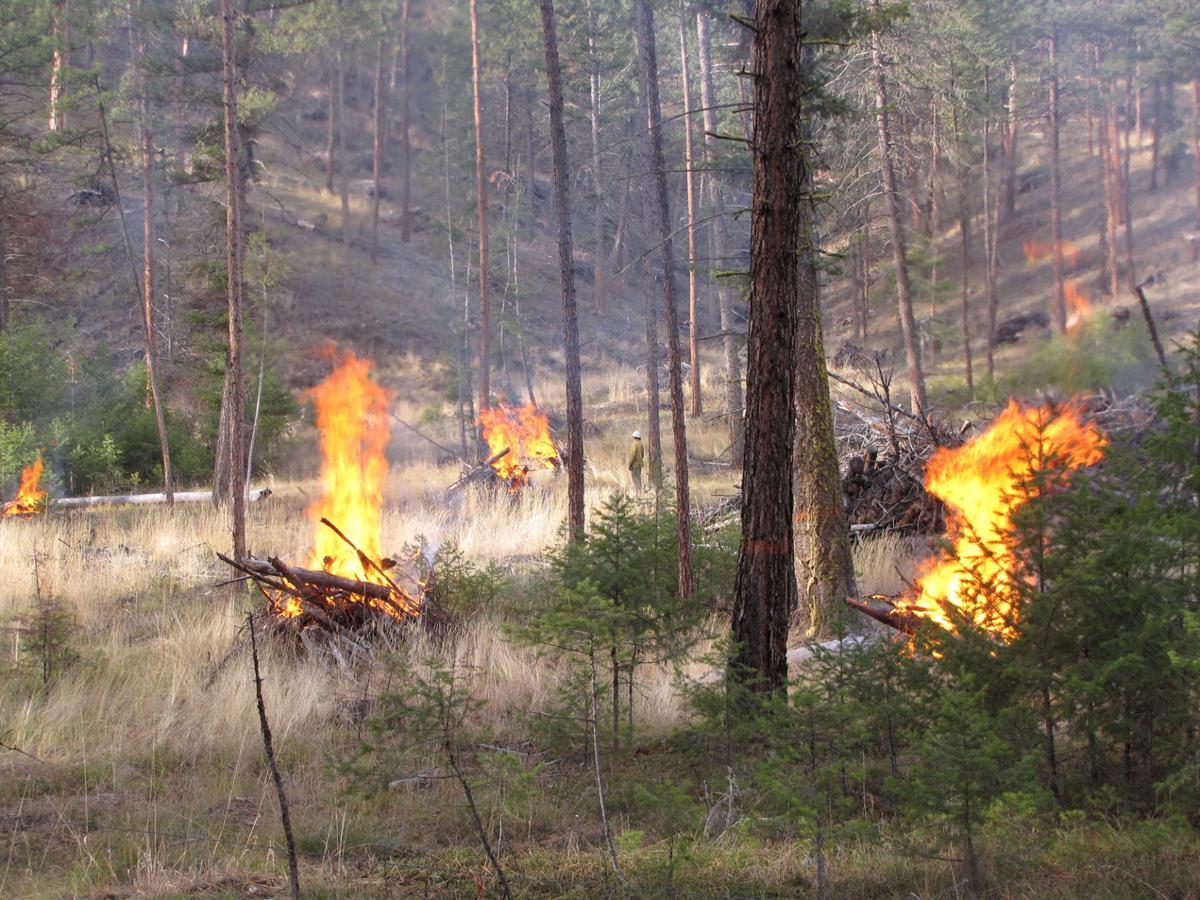 BNF burning piles