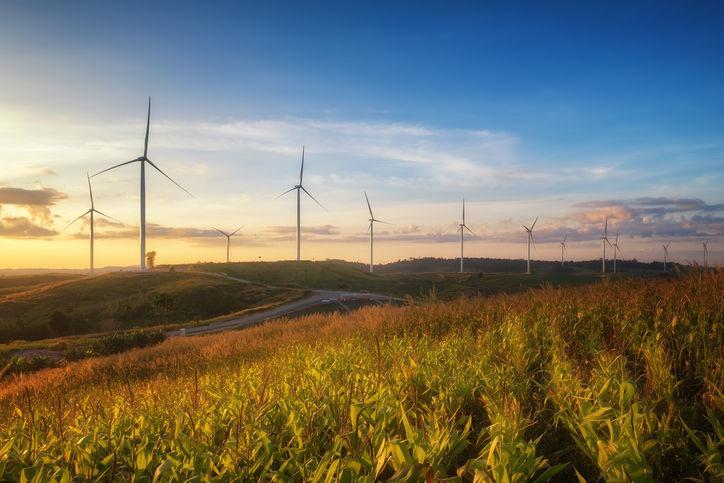 Wind farm windmills