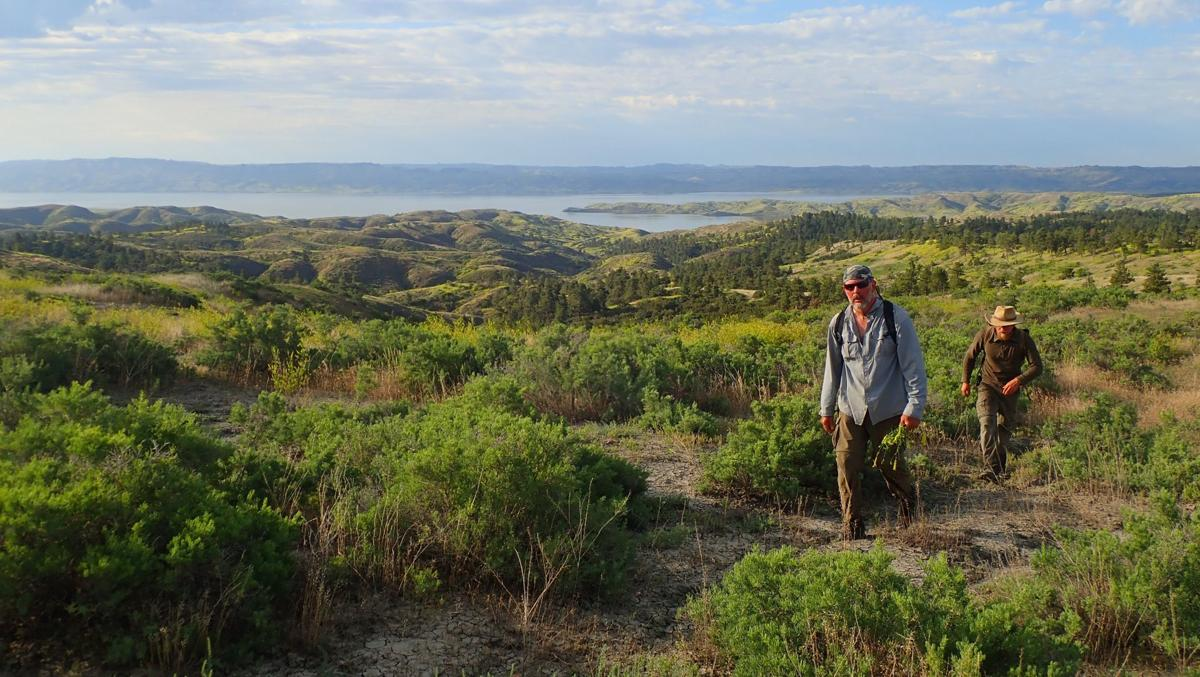 Hiking overland from Fourchette Bay in search of bison.