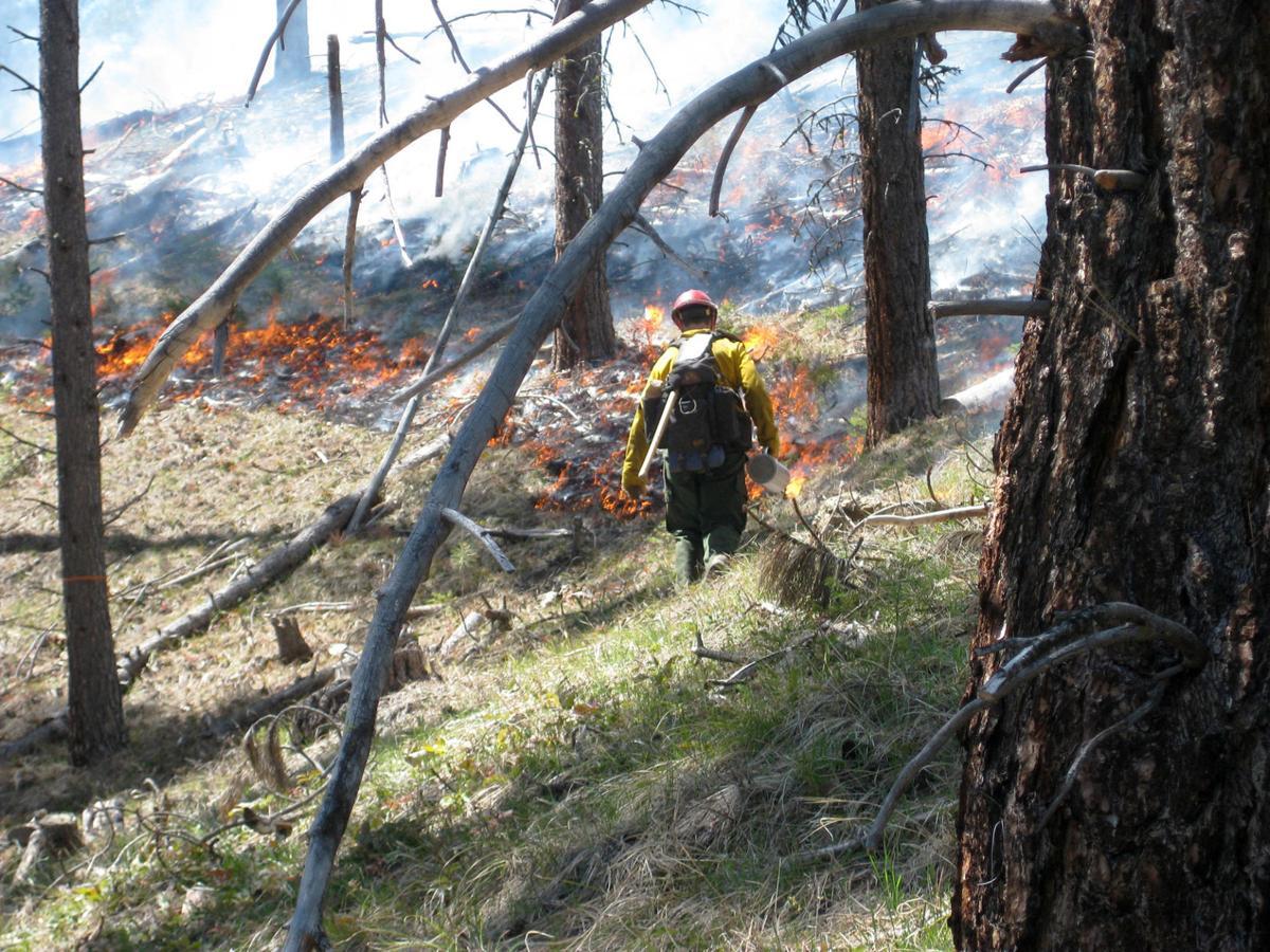 BNF burning