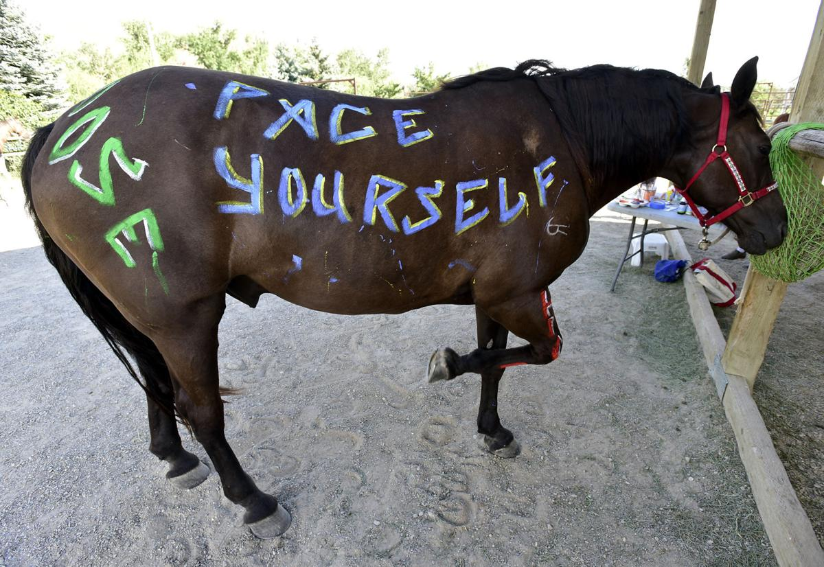 072716-mis-nws-horse-painting-01-secondary