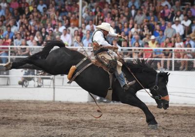 081415 rodeo 01 lb.jpg