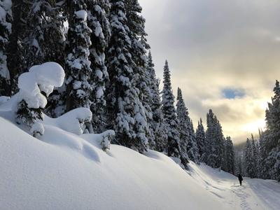 Forest Service warns people about backcountry travel