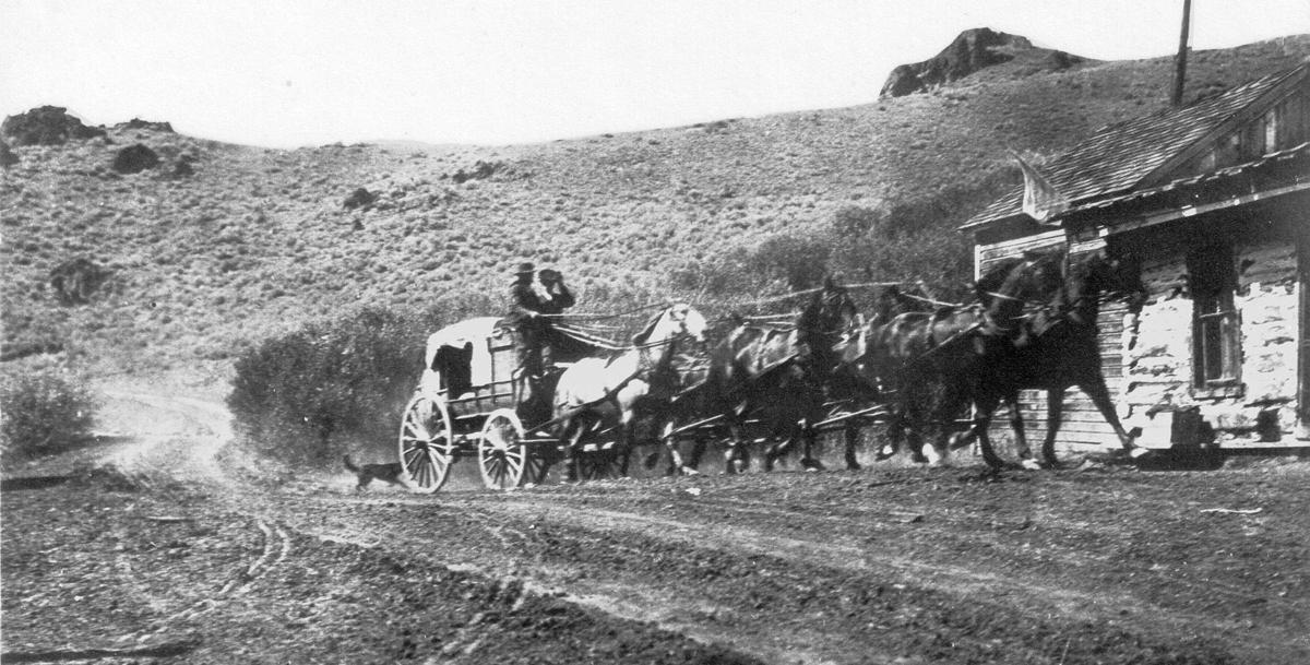 HISTORY mountain express