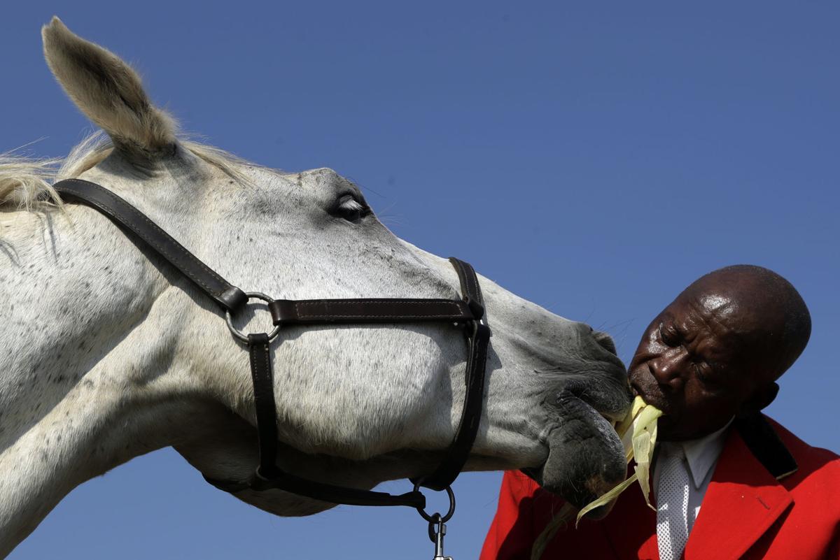 South Africa Soweto Horse Gymnastics