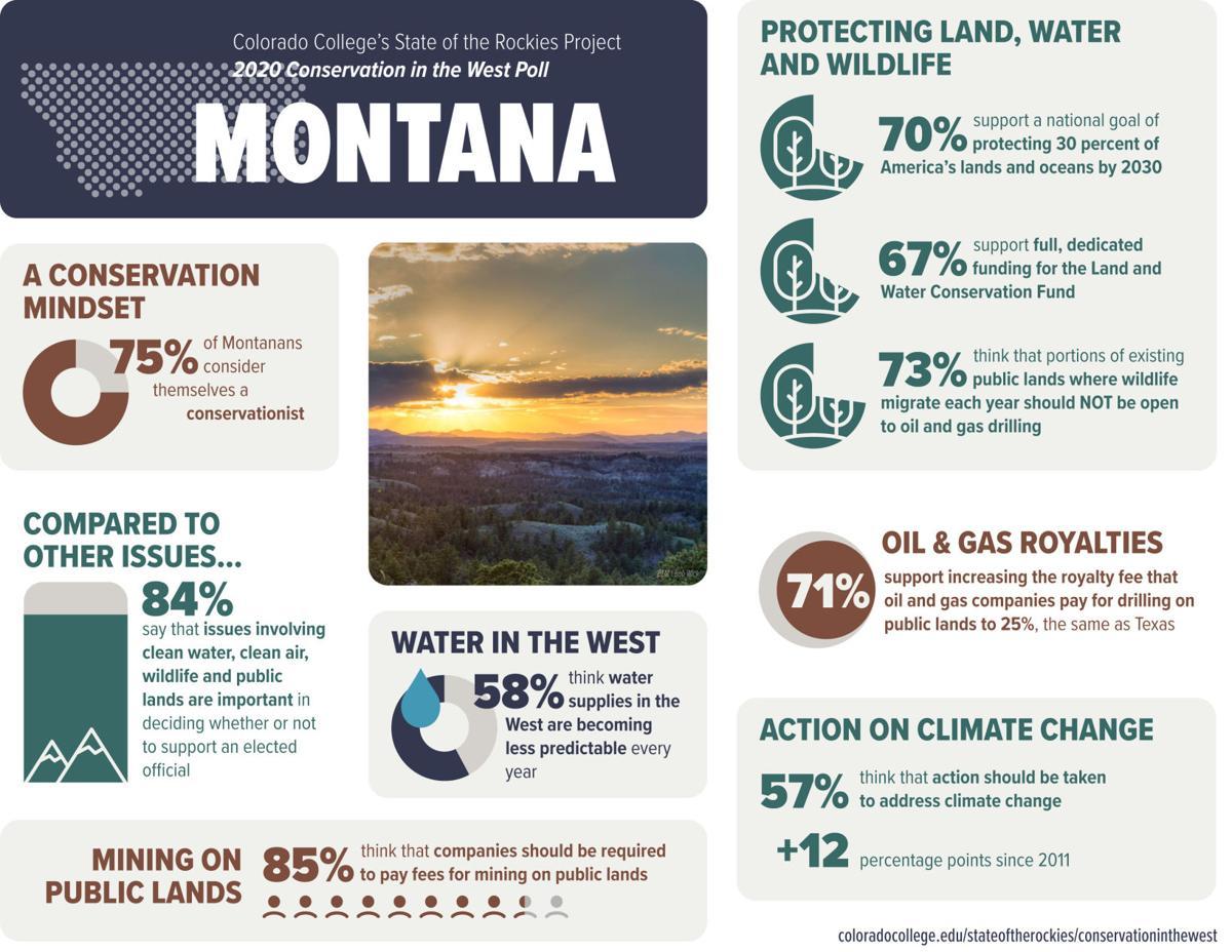 Montana poll results