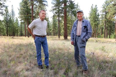 Fire and the forests: Retired foresters' book discusses role of ponderosa pine in the West