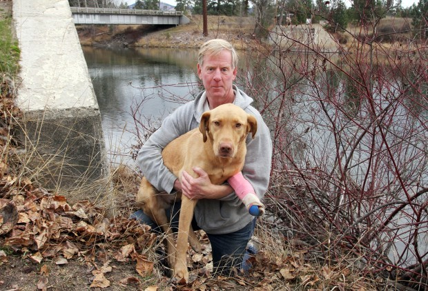 Illegally trapped: Dog caught in foot-hold trap at Florence Bridge fishing access site