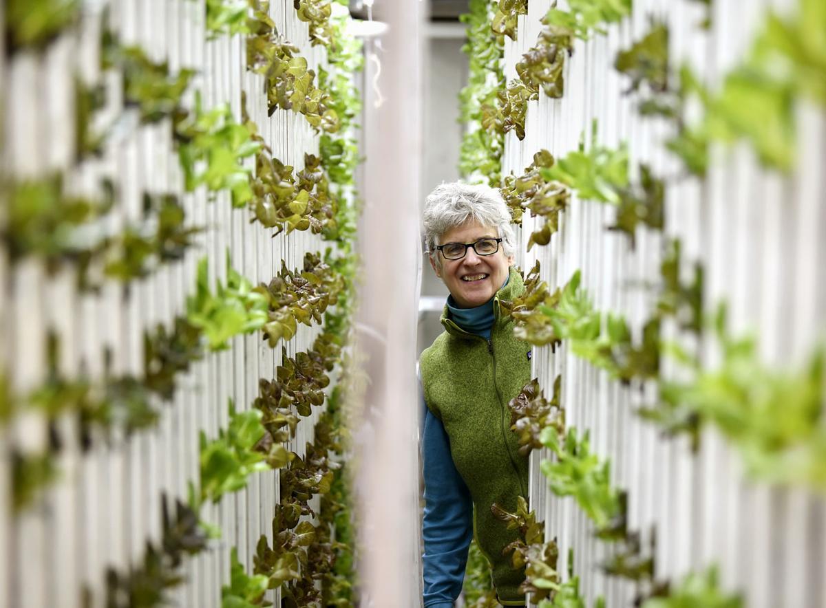 Jennifer Stackpole, greens 1