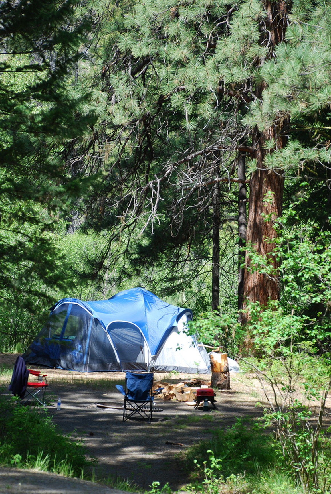 BNF Campground 1