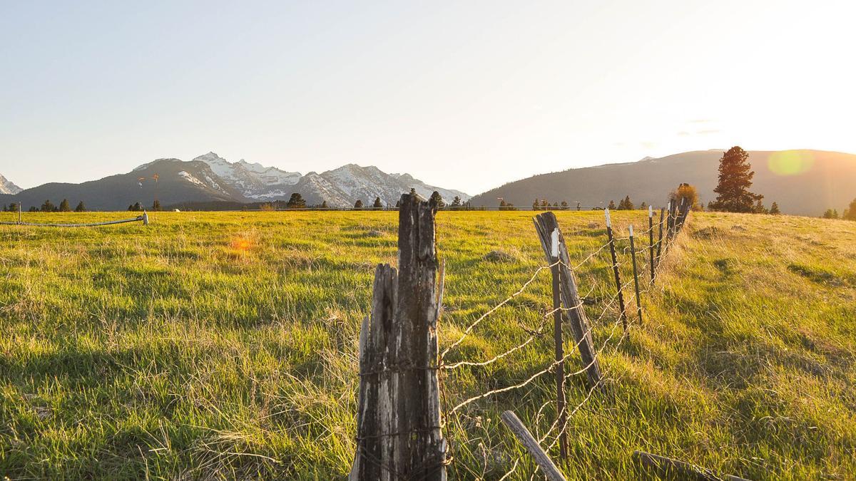 Conservation easement preserves historic Paddock Ranch