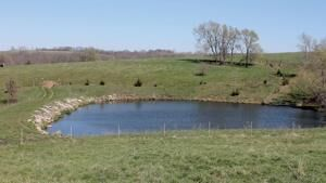 Take care stocking farm ponds during hot summer